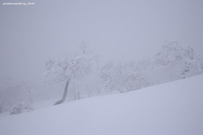 shiraoidake-2012 (13)