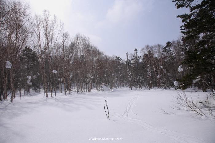 shiraoidake-2012 (21)