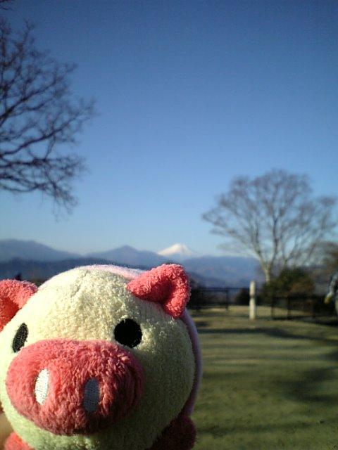 高尾山 Mt. Takao