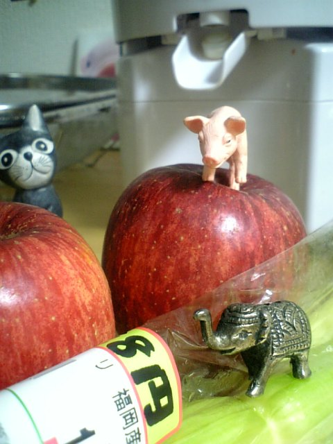 スタイルプラスパワージューサー りんごとセロリ