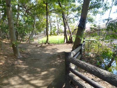 藤ヶ谷公園