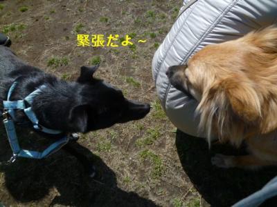 106_20120401192658.jpg