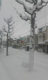 Image131yuki.jpg