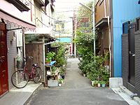 mokuzou5.jpg