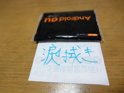 DSC05198_convert_20120117211928.jpg