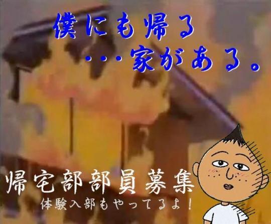 vlomoshiro003386.jpg