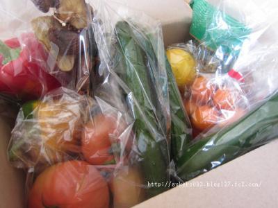 荷物の箱を開けると新鮮な野菜たちがどっさりっ!!