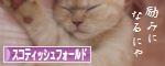 猫ブログ村スコランキング