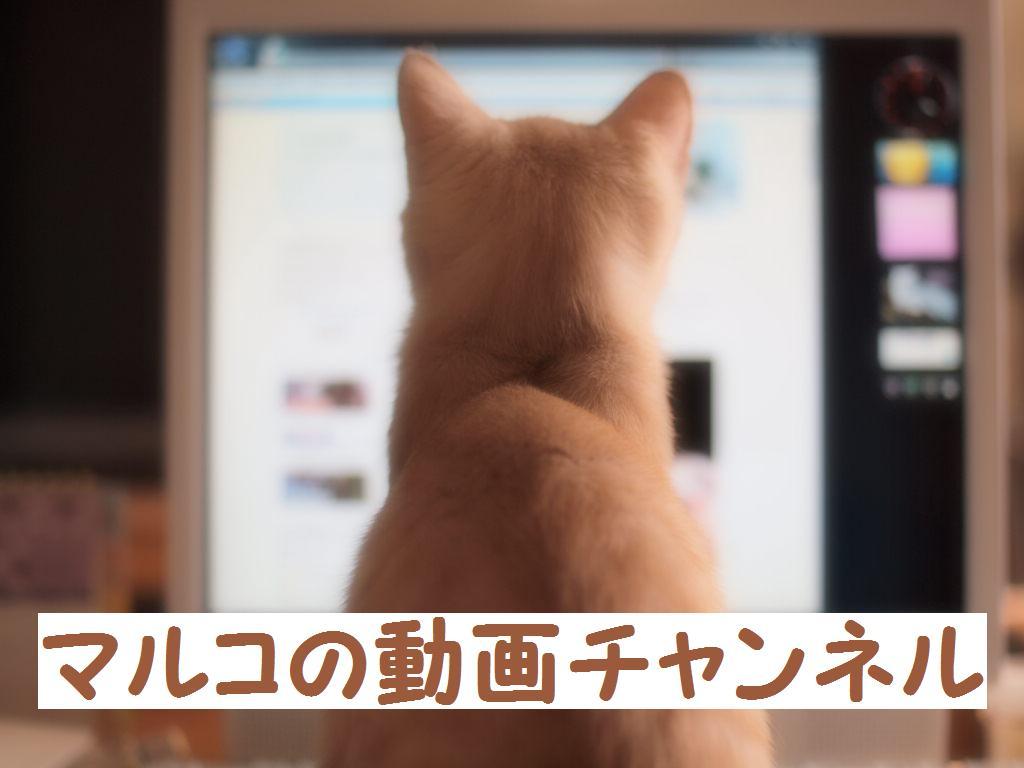 マルコの動画チャンネル