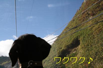 IMG_7829_convert_20101019170100.jpg