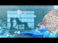乃木坂春香の秘密 ぴゅあれっつぁ♪ 第09話「初体験です☆」.mp4_000768726