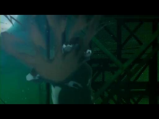 ダンス イン ザ ヴァンパイアバンド 第01話「プロムナイト」.flv_001238654