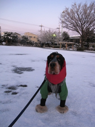 雪とサム2