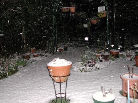 雪の庭 2010/3/9