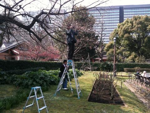 日比谷公園の桜1