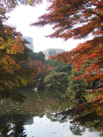 日比谷公園の紅葉5