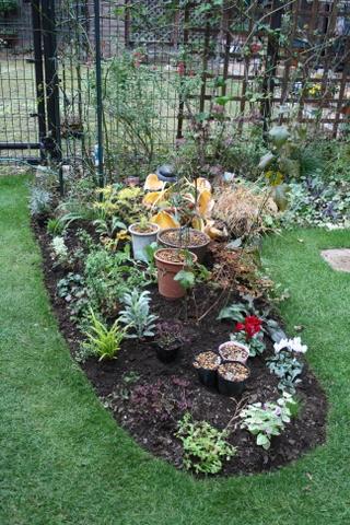 花壇拡張完了4