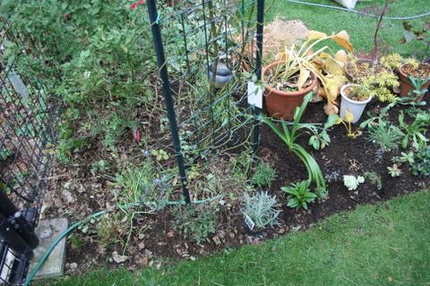 花壇拡張完了3