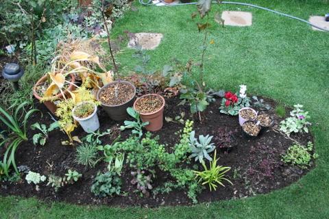 花壇拡張完了2