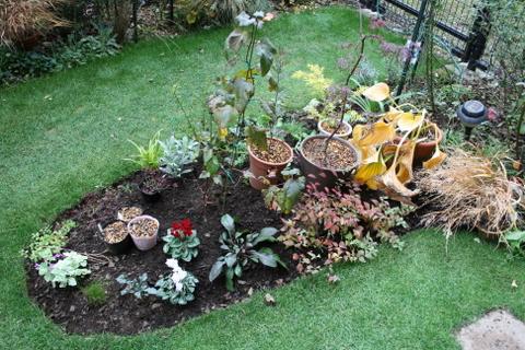 花壇拡張完了1