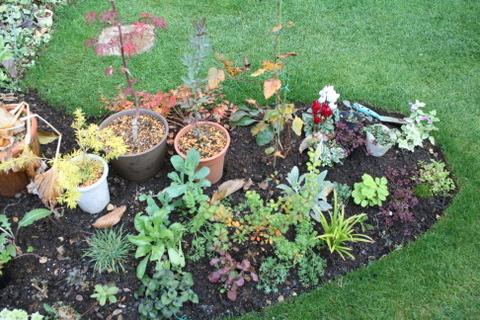 新設花壇の様子