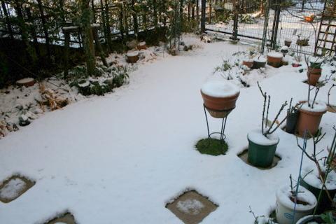 雪の庭2009/2/2