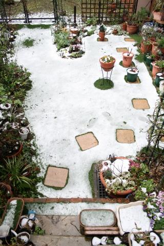 雪の芝庭2010/3/10