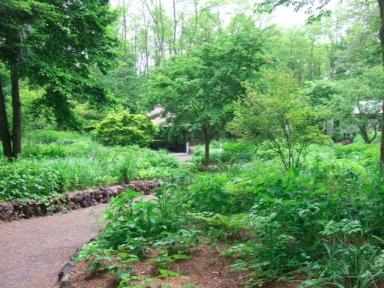 絵本の森2