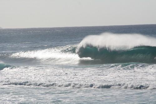 2010HAWAII (216) (500x333)