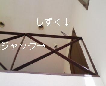 100103_112945_ed.jpg