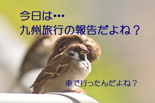 010_20130927211700d13.jpg