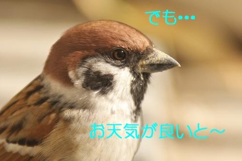 020_20131130201148120.jpg