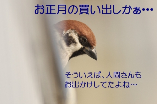 020_201312302033402a8.jpg