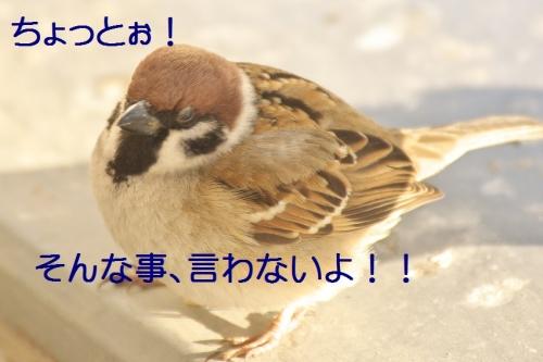 040_201401312130419c2.jpg