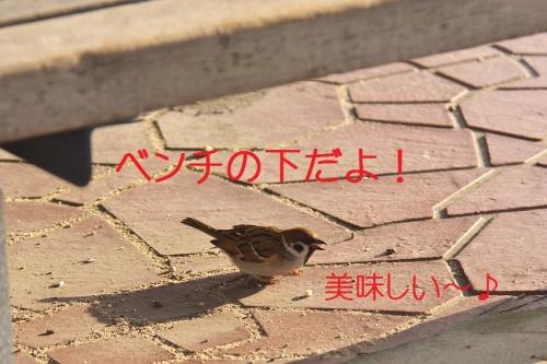 060_20140104180005fd3.jpg