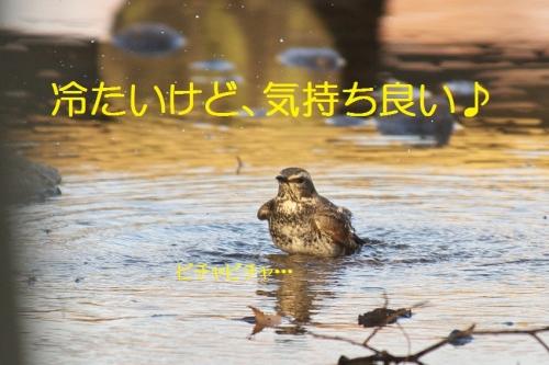 070_201401312131389a4.jpg