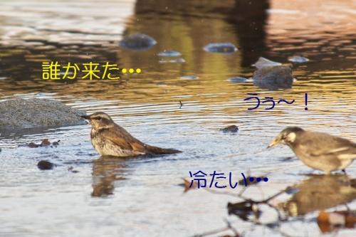 090_2014013121314666a.jpg