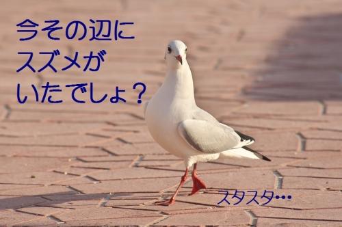 100_20140104180019567.jpg