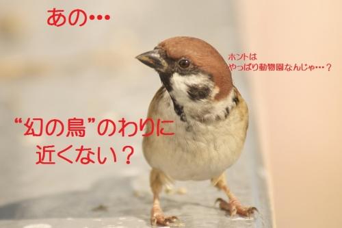 110_20131104192229aa8.jpg