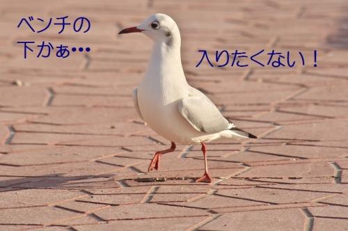 120_20140104180101876.jpg