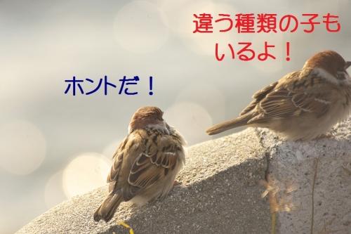 120_20140107184002100.jpg
