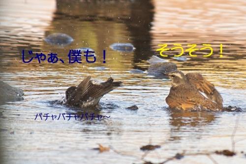 140_20140131213241d7a.jpg