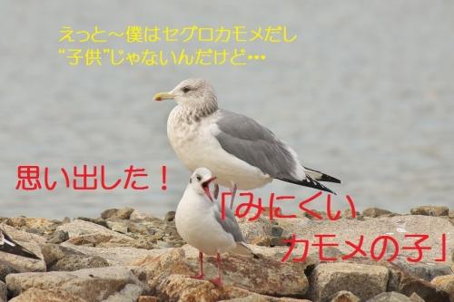 180_20140113183120b43.jpg