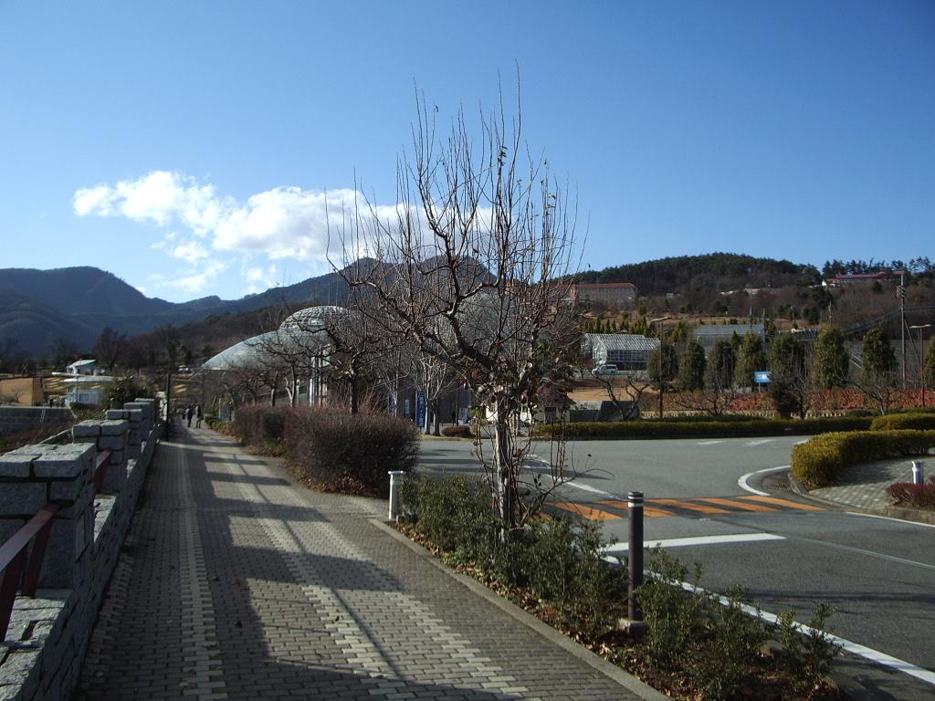 IMGP0509.jpg