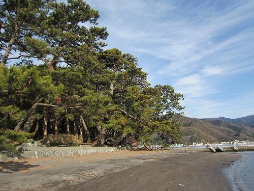 御浜岬公園 3