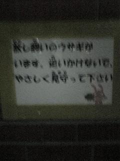 091226_185842_ed.jpg