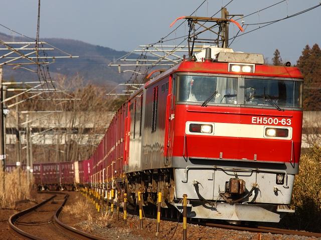 IMG_4981.jpg