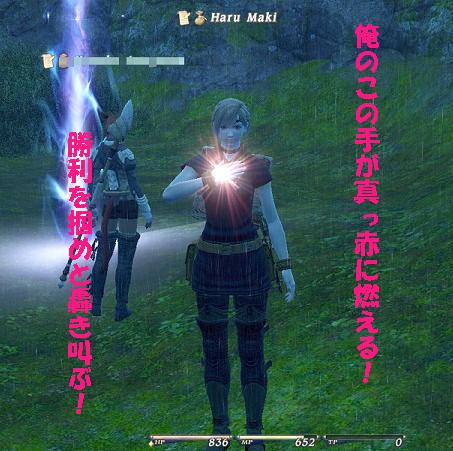 2010_10_25_100_20101027065750.jpg