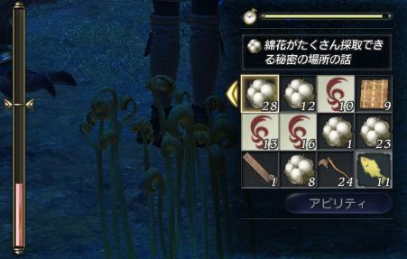 2010_11_05_148.jpg