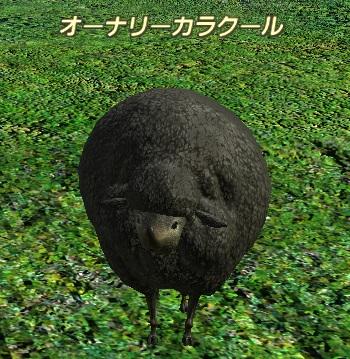 2010_11_23_100.jpg